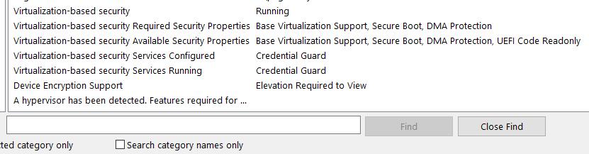 CredentialGuardMsinfo32