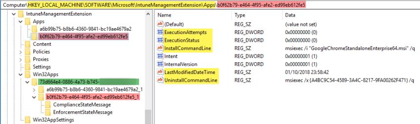 IntuneWin32AppDetailsRegistry