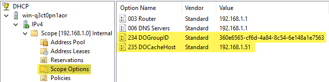 DHCP scope option 235